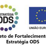 Entenda o Projeto de Fortalecimento da Estratégia ODS